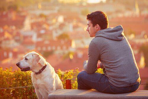 Dono e cão no parque