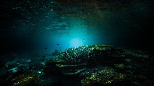 Profundeza do mar