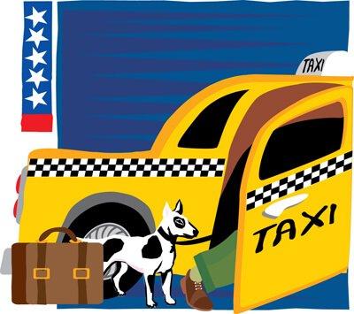Táxis para cães sem custo adicional