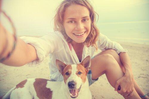 destinos europeus para viajar com o seu cão