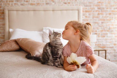 Gato e menina