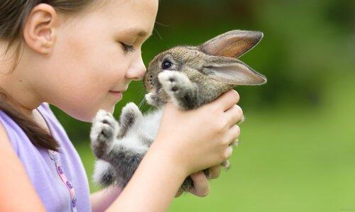 Menina e coelho