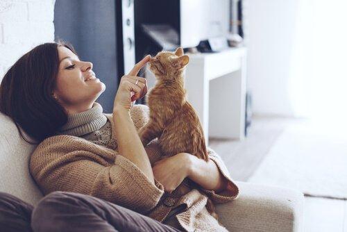 Dona brincando com seu gato