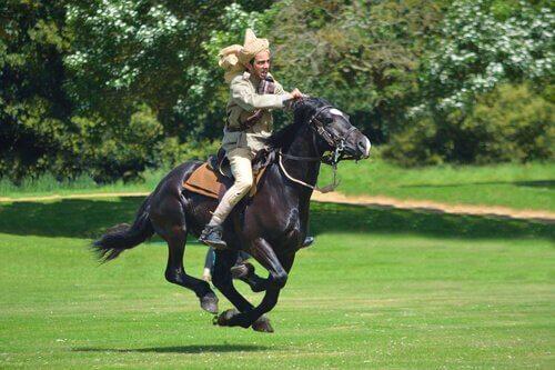 Esporte com cavalo