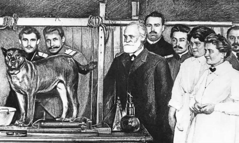 Ivan Pavlov e o reforço positivo para cães