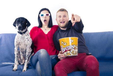 Filmes para assistir com seu cachorro