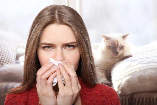 alergia a pelos de animais