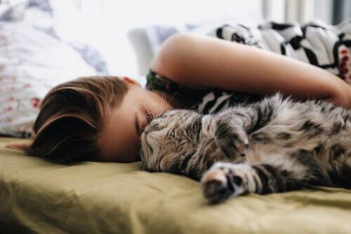 5 coisas para ter em mente antes de dormir com seu gato