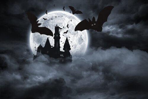 Morcegos e vampiros