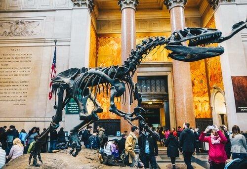 Museu Americano de História Natural, em Nova York
