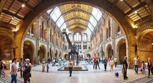 5 melhores museus de história natural