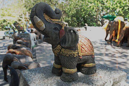 animais considerados de boa sorte: elefante