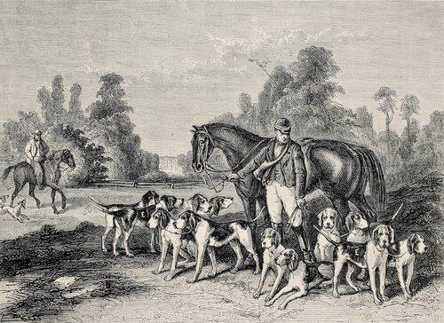 Cães em quadros famosos