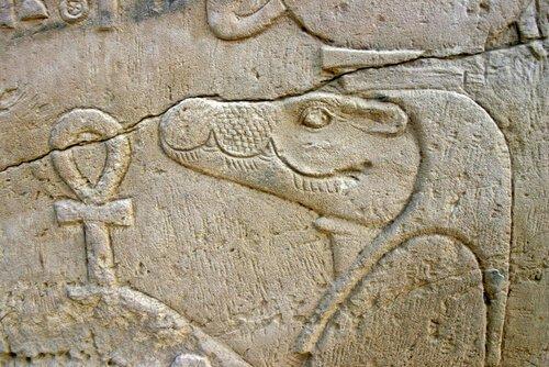 5 animais sagrados do Antigo Egito