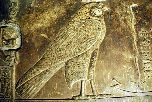 falcão sagrado do antigo Egito