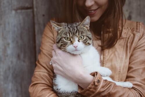Dona com gato no colo