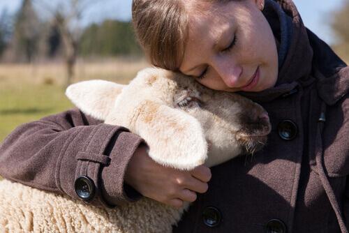 Farm Sanctuary: mulher abraça uma ovelha