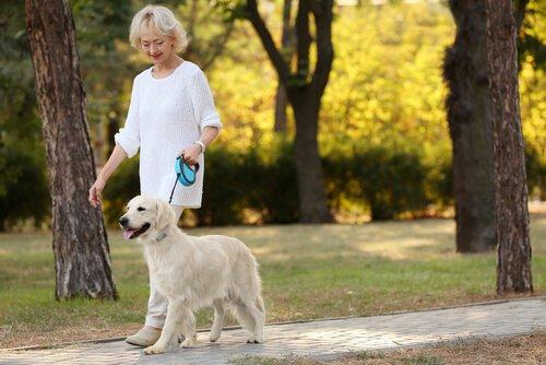 Idosa passeando com cachorro: ter um pet diminui a solidão
