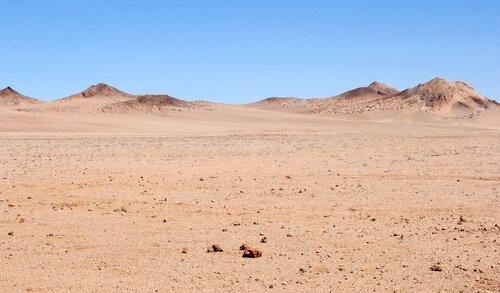 ecossistemas do mundo: deserto
