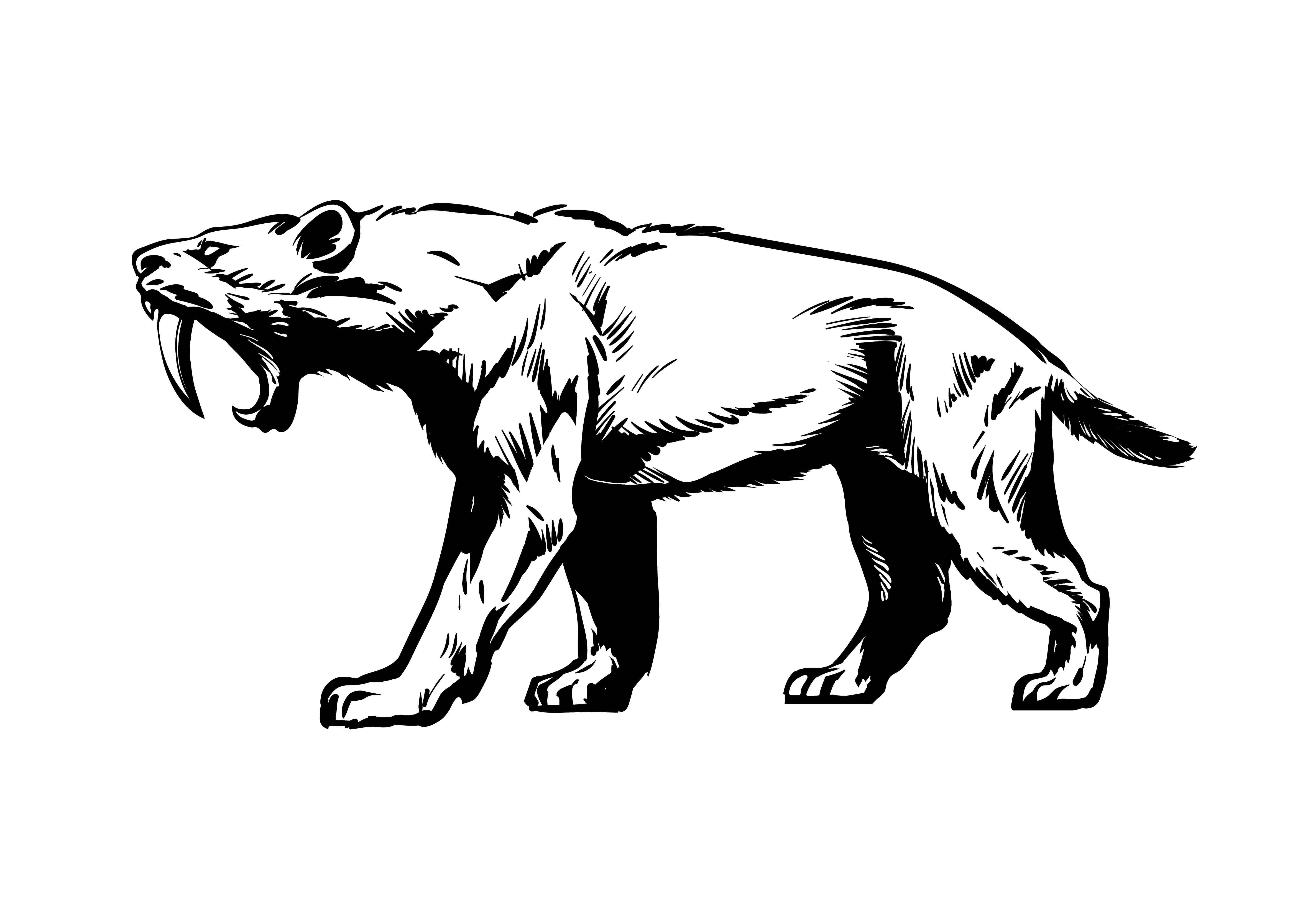 Smilodon: tigre-dente-de-sabre