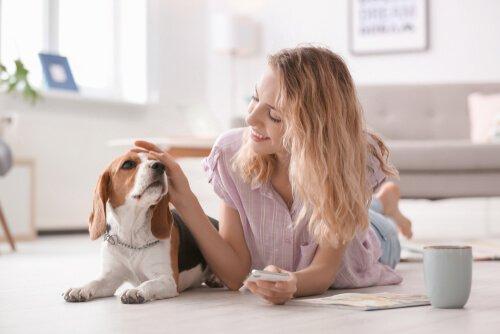 Mulher acariciando cachorro