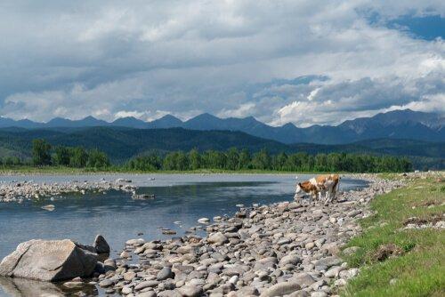 Parque Nacional de Tunkinsky, na Rússia