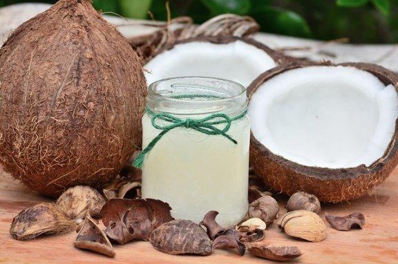 3 propriedades do óleo de coco para cães