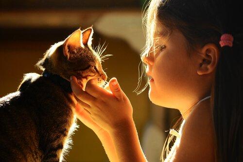 Menina acariciando um gatinho