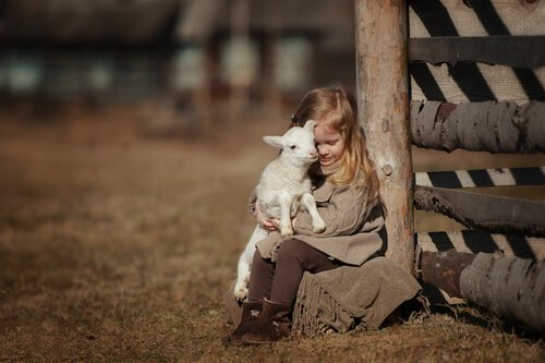 Menina abraçando cordeiro