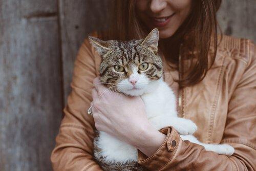 Mulher com gato no colo