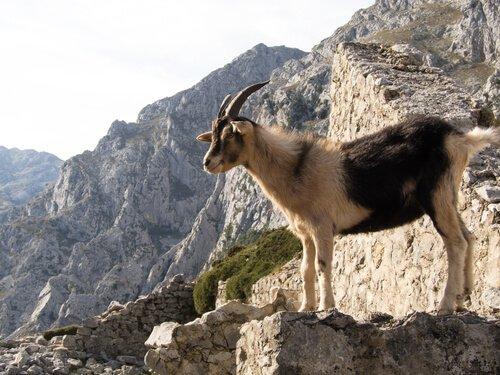 5 parques nacionais da Espanha