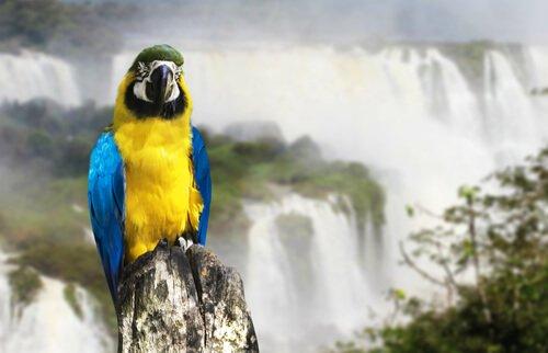 5 parques nacionais da Argentina