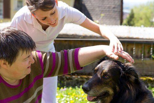 Terapia com cachorros