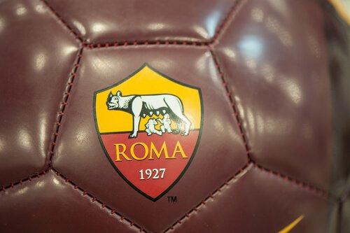 animais em escudos de futebol