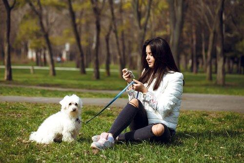 dona e cão na grama