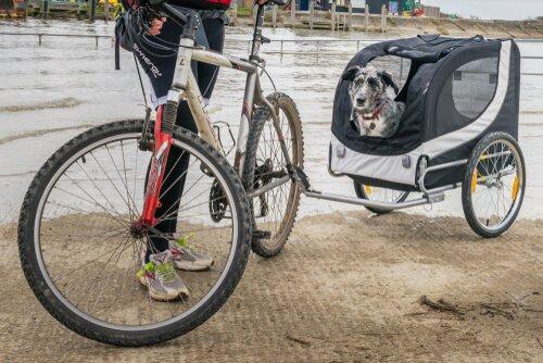 Trailer de bicicleta para cães
