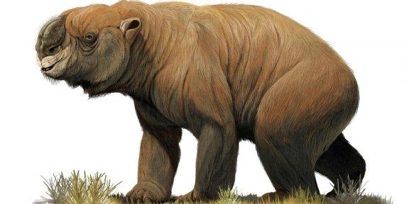 A extinta megafauna Australiana