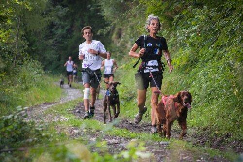 correr com cães