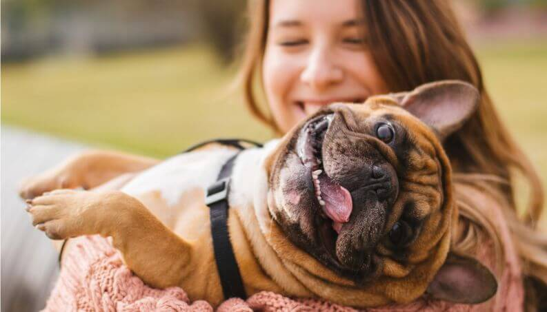 7 maneiras de mimar o seu cachorro