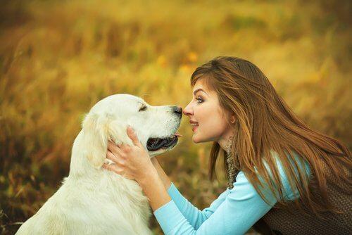 Mulher se comunicando com cão.