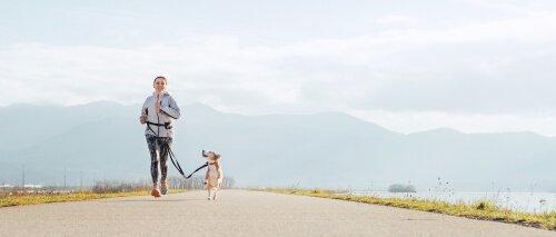 Benefícios de correr com seu cão