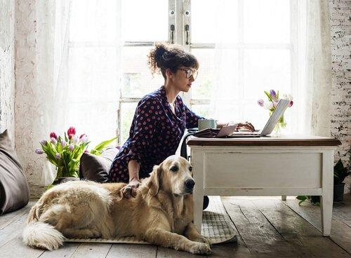 Mulher trabalhando com o cachorro ao lado