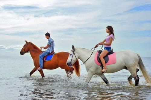 Posso andar com meu cavalo na praia?