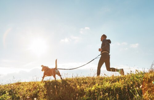 atividade física com cães