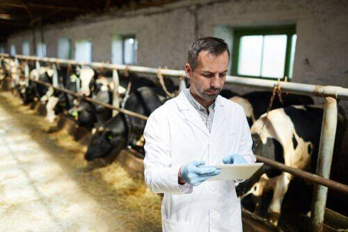 Resistência a antibióticos e pecuária