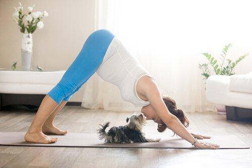 Mulher grávida fazendo yoga com cachorro