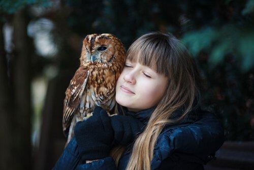 filhote de coruja com menina