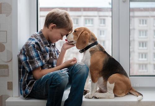 Criança com seu cachorro