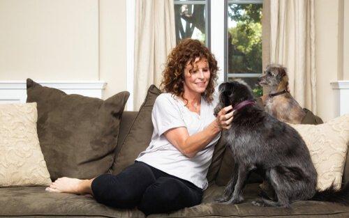 Cuidador de cães: 5 dicas para você se tornar um!