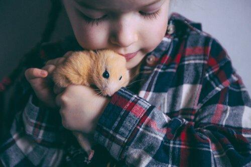 Criança beijando hamster